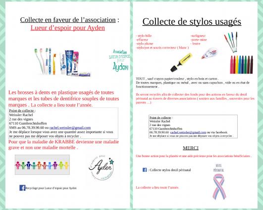 collecte_stylos